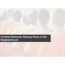 SOC 220 Week 4 Assignment, Criminal Behavior Among Teens in the Neighborhood 2