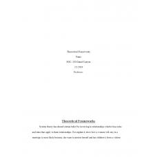 SOC 320 Topic 1 Theoretical Frameworks