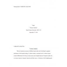 HCA 530 Topic 2 Assignment, Variance Analysis Paper: 2019