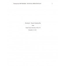 HCA 530 Topic 2 Benchmark Assignment, Financial Operating Plan Analysis: 2019