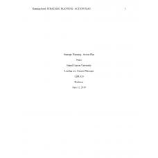 LDR 620 Week 5 Benchmark Assignment, Strategic Planning - Action Plan: 2019
