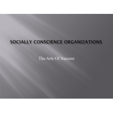 LDR 620 Week 2 Discussion 2, Socially Conscience Organizations: 2019