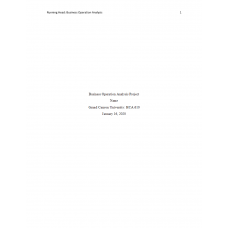 HCA 610 Topic 4 Assignment, Business Operation Analysis Project