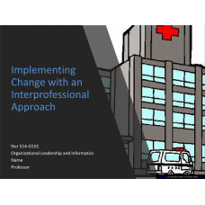 NUR 514 Week 3 Assignment, Implementing Change with an Interprofessional Approach 2