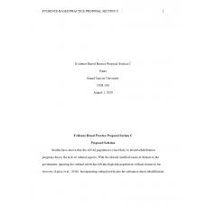 NUR 590 Week 3 EBP Section C - Solution Description (ANAI)