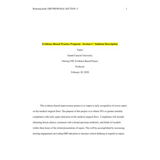 NUR 590 Week 3 Evidence-Based Practice Proposal - Section C - Solution Description