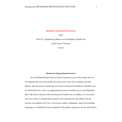 HCA 455 Topic 4 Benchmark, Organizational Structure: Spring 2020