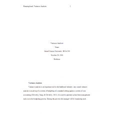 HCA 240 Assignment, Variance Analysis: 2019