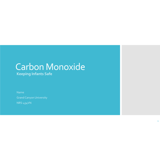 NRS 434VN Topic 1 Assignment, Environmental Factors and Health Promotion - Carbon Monoxide: Summer 2020