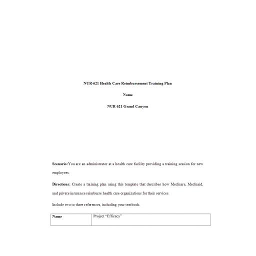 NUR 621 Week 2 Assignment, Health Care Reimbursement Training Plan