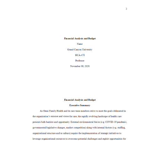HCA 470 Business Plan Part 2 - Financial Analysis and Budget