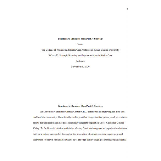 HCA 470 Week 6 Benchmark, Business Plan Part 3 - Strategy