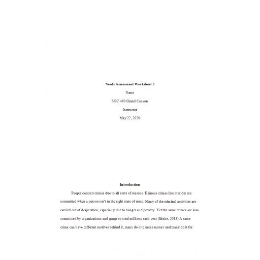 SOC 480 Week 2 Assignment, Needs Assessment Worksheet 2