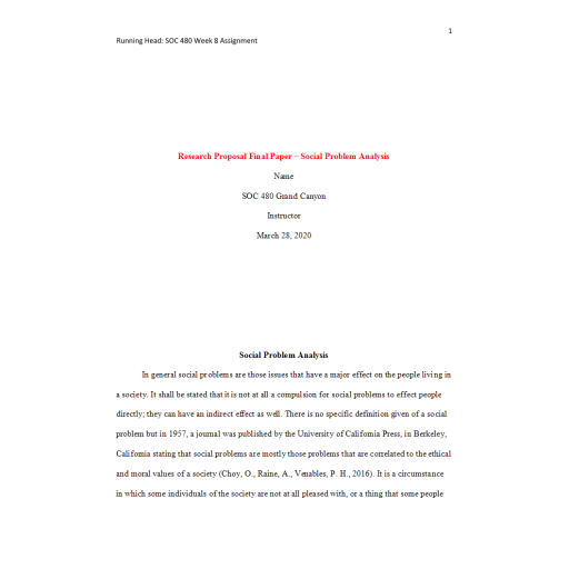 SOC 480 Week 8 Benchmark Assignment, Research Proposal Final Paper - Social Problem Analysis