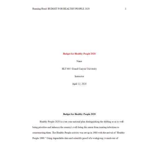 HLT 605 Week 3 Assignment, Sample Budget 1
