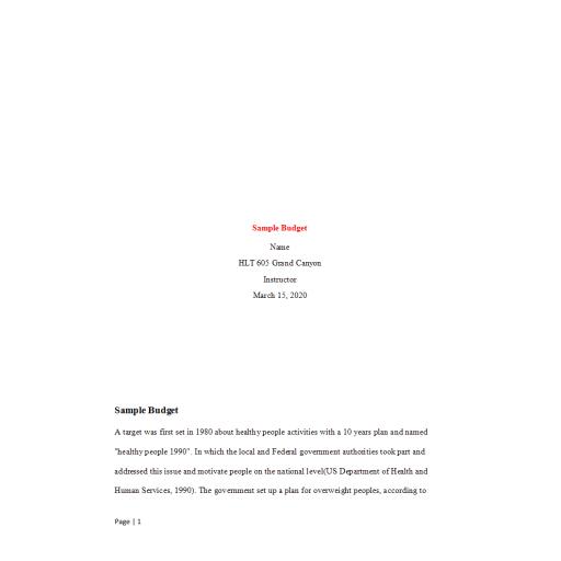 HLT 605 Week 3 Assignment, Sample Budget 2