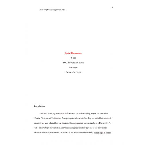 SOC 449 Week 1 Benchmark Assignment, Social Phenomena