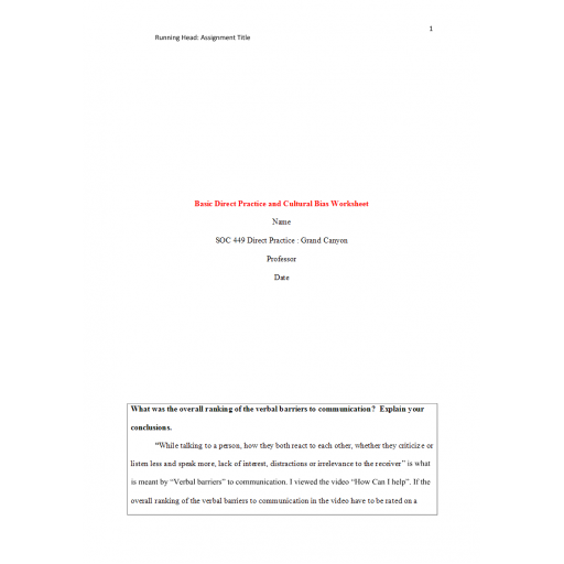 SOC 449 Week 2 Assignment, Basic Direct Practice and Cultural Bias Worksheet