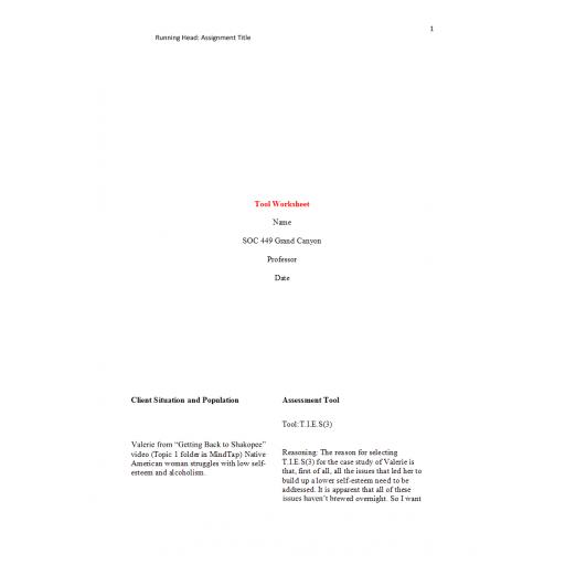 SOC 449 Week 5 Assignment, Tool Worksheet