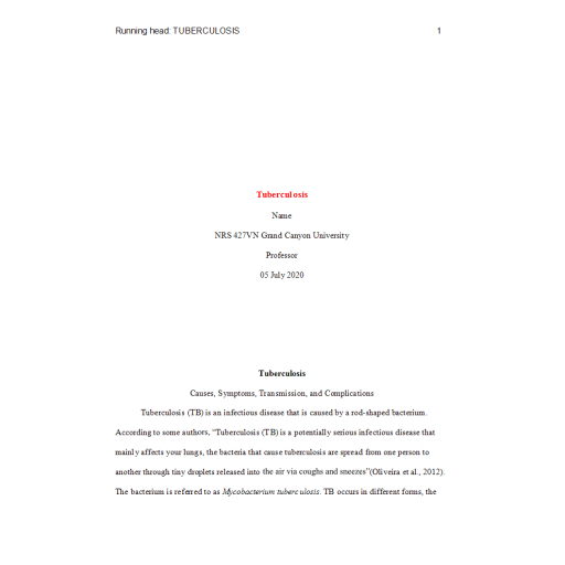 NRS 427VN Topic 2 Benchmark Assignment, Epidemiology Paper - Tuberculosis