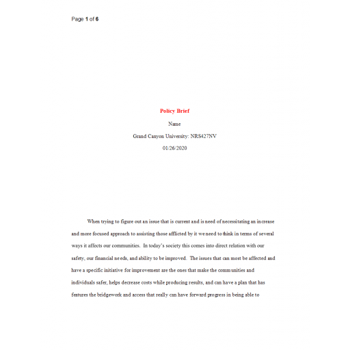 NRS 427VN Topic 4 Policy Brief Paper - Mental Health