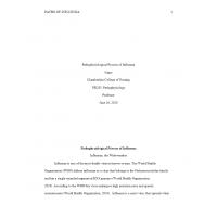 NR 283 Pathophysiological Process of Influenza