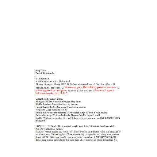NR 511 Week 4 Homework - Clinical Encounter Log