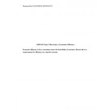 ADM 614 Topic 3 Discussion 2, Economic Efficiency