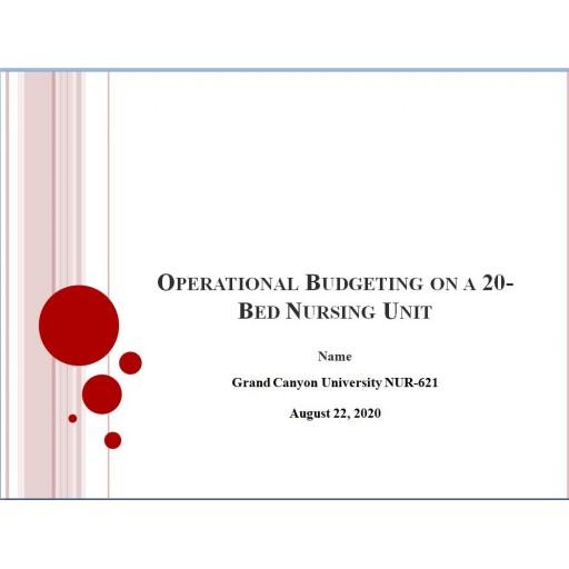 NUR 621 Week 1 Assignment, Operational Budget Presentation
